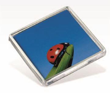 Picture of FS02 Square Fridge Magnet